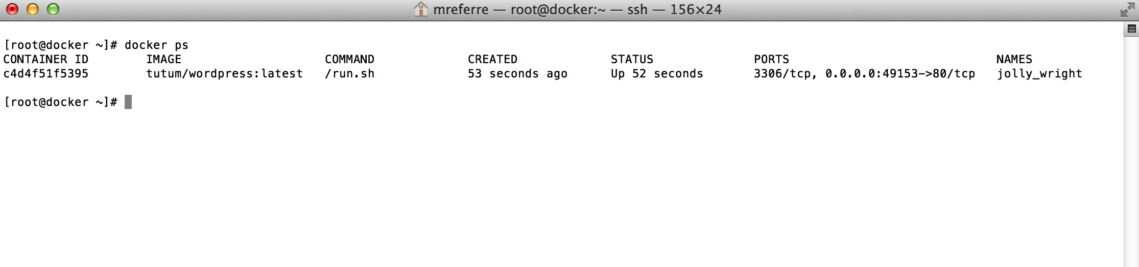 how to connect remotely to docker